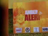 ¿Cuáles son las diferencias entre la Alerta Azul, la Alerta Amber y la Alerta de Plata? Acá te explicamos