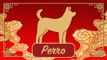Predicciones para el Perro durante el año del Buey en el Horóscopo Chino