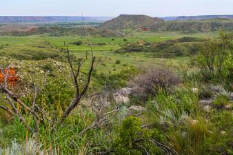 Estos son los Parque Nacionales de Texas a los que podrás entrar gratis este 28 de septiembre