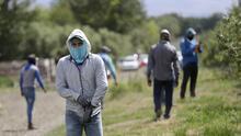 La pandemia en el campo de EEUU: alto número de contagios entre agricultores hispanos en el estado de Washington (fotos)