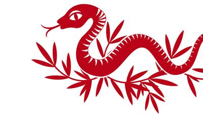 El mes de la serpiente llega lleno de inteligencia y belleza