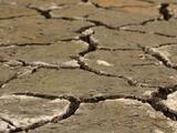 Avanza sequía en California: 40 mil propietarios de derechos de agua podrían enfrentar cortes