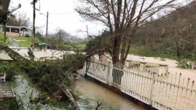 Florida (Puerto Rico) después del paso del huracán María: últimas noticias