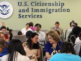 Apurar un caso, visas especiales, solicitudes electrónicas: 25 claves sobre el servicio de inmigración