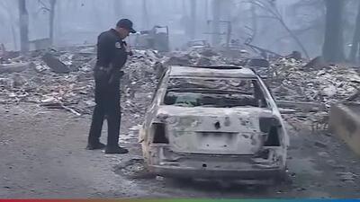 """""""Jamás había visto un fuego tan catastrófico como este"""": El Feo reacciona a los incendios en California"""