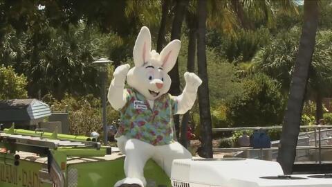 Miami Seaquarium se prepara para tres días de sorpresas y celebraciones de Pascua