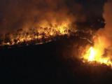 Incendio forestal destruye 900 acres en Little Egg Harbor Township