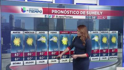 Cielos soleados y temperaturas agradables en la Bahía