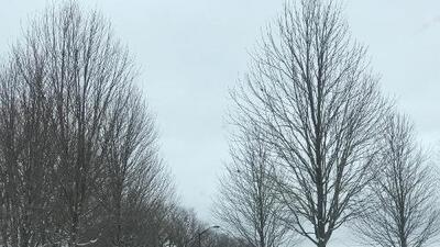 Así luce el area de Chicago después de la primera tormenta de nieve de 2019