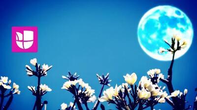 Horóscopo del 7 de abril   La luna te invita a reflexionar