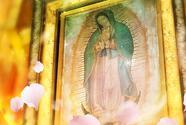 Haz clic para ver los capítulos de La Rosa de Guadalupe