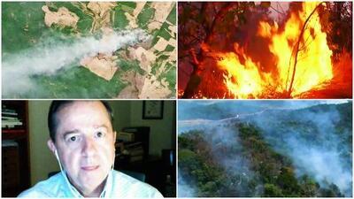 """""""Sin el Amazonas no podríamos sobrevivir"""": el experto Javier Sierra explica la gravedad de los incendios en Brasil"""