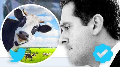 A un congresista no le gusta una cuenta de Twitter, la demanda y ayuda a que se haga viral: el caso de 'La vaca de Devin Nunes'