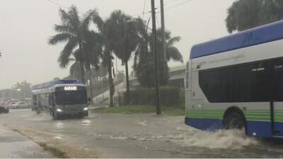 Advertencias para conductores por intensas lluvias e inundaciones en el sur de Florida