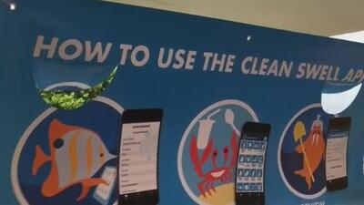 Comunidad en Virginia Key se une para limpiar las playas en el Día Internacional de Limpieza Costera