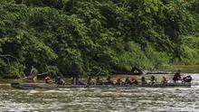 Denuncian robos y violaciones: el drama que viven los migrantes cubanos que cruzan la selva del Darién