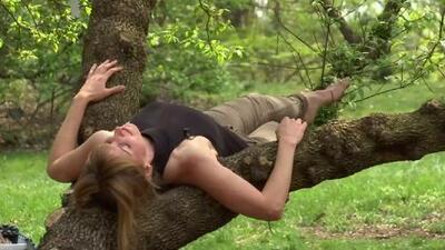 Baños de bosque: la singular terapia para mejorar la salud sin efectos secundarios