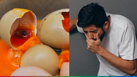 Cuidado: si compraste huevos recientemente, pueden estar contaminados