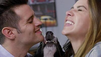 El amor de una pareja por su perro los lleva a volverse a enamorar