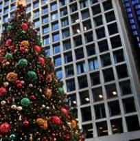 Las personas que viven en Texas compran los árboles de Navidad más caros, según estudio