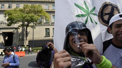 México otorga amparo para siembra y consumo recreativo de la marihuana