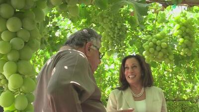 Senadora Kamala Harris visitó Fresno para enterarse de las quejas de los productores agrícolas
