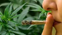 Nueva York diseña la nueva ley que permitiría el consumo de marihuana recreativa para mayores de 21 años
