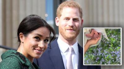 La impresionante cantidad de 'likes' que logró esta foto de los piecitos del bebé de Meghan y Harry