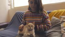 Cómo preparar a su mascota para regresar a la rutina después de la pandemia