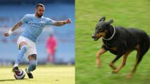 Jugador del City paga una millonada por perro guardián