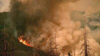 Incendio Ferguson ha consumido 31,000 acres y podría arrasar más terreno