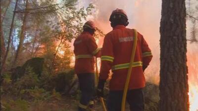 Continúan las evacuaciones por incendios forestales en California
