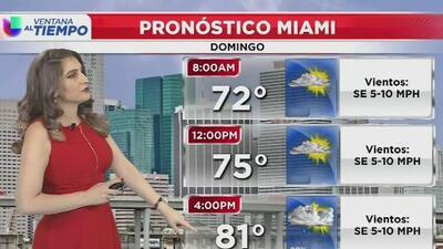 Ventana al Tiempo: Cielos parcialmente soleados en horas de la mañana este domingo en Miami