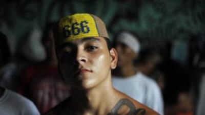 Pandilleros de la Mara Salvatrucha entre los menores inmigrantes bajo custodia