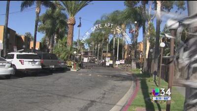 Familias de South Gate denuncian infestación de chinches en sus viviendas