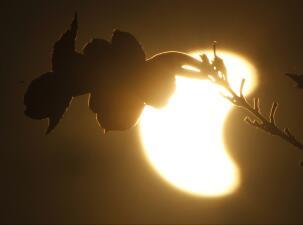 En fotos: Así se vio desde la tierra el último eclipse solar