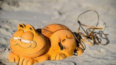 Desde hace 30 años aparecen teléfonos de Garfield en esta playa: ahora descubrieron por fin de qué se trata