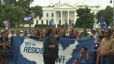 ¿Qué pasaría con los salvadoreños amparados por el TPS si cancelan el programa?