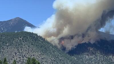 Coconino emite orden de evacuación ante propagación de incendio en distintas comunidades de Flagstaff