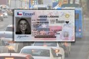 """""""Sería un alivio para la población"""": Cae propuesta que buscaba otorgar permisos de conducir para indocumentados"""