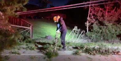 Fuertes vientos provocan incendios, derriban árboles y alcanzan casi 100 mph en el Área de la Bahía