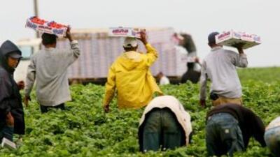 El servicio de inmigración endurece los requisitos para renovar visas temporales de trabajo