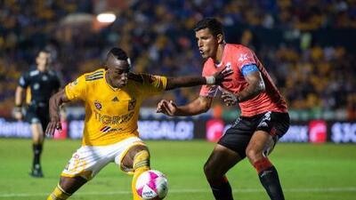 Cómo ver Lobos BUAP vs. Tigres en vivo, por la Liga MX 14 Abril 2019