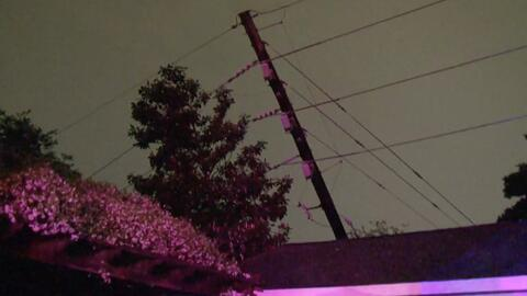 La caída de un árbol aparentemente provocó un incendio en una casa al oeste de Houston