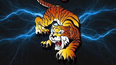 ¡Llegó el Mes del Tigre! Los impulsos emocionales están algo descontrolados