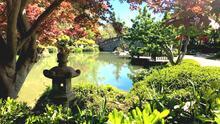 Jardín Japonés de Fresno: un panorama primaveral que debes conocer