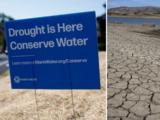 """""""Agricultura en crisis"""": sequía extrema pone en riesgo cosechas y trabajos en el sur de California"""