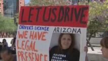 Votantes de Arizona decidirán el futuro de las colegiaturas para los dreamers
