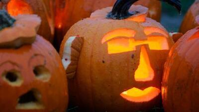 Advierten de calles cerradas y posible caos vehicular por celebración de Halloween en Wynwood