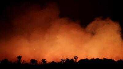 El Amazonas en llamas: claves para entender por qué son tan graves los incendios en el pulmón del mundo